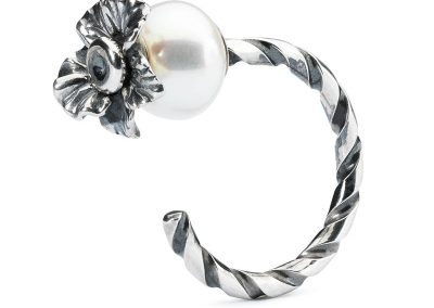 TAGRI-00391-99-Twisted-Ring-of-Change-b